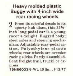 1970 Buggy descripiton.JPG