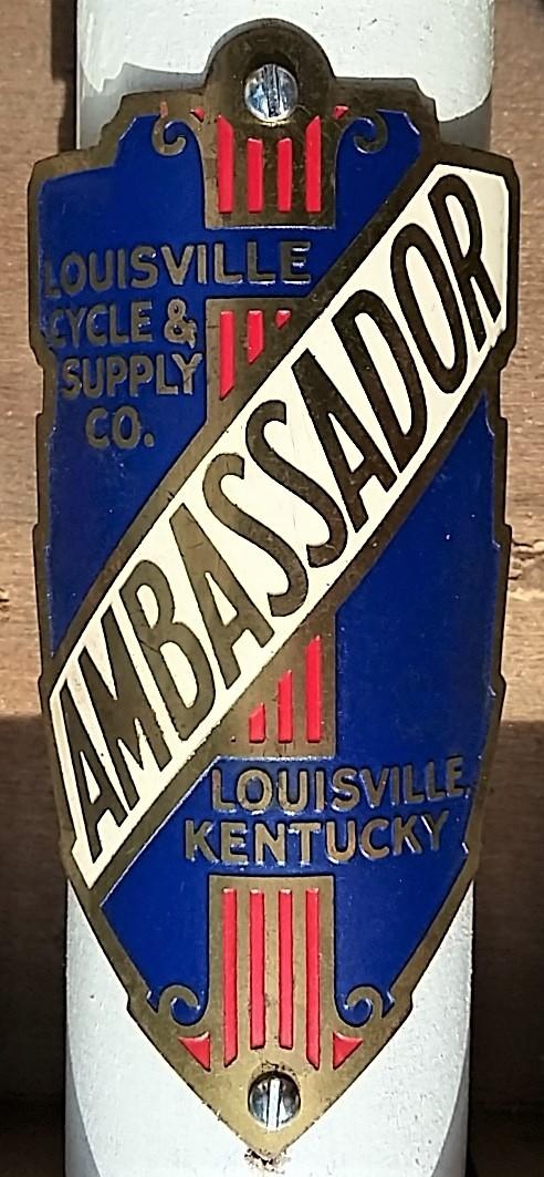 AMBASSADOR 01 (2).jpg