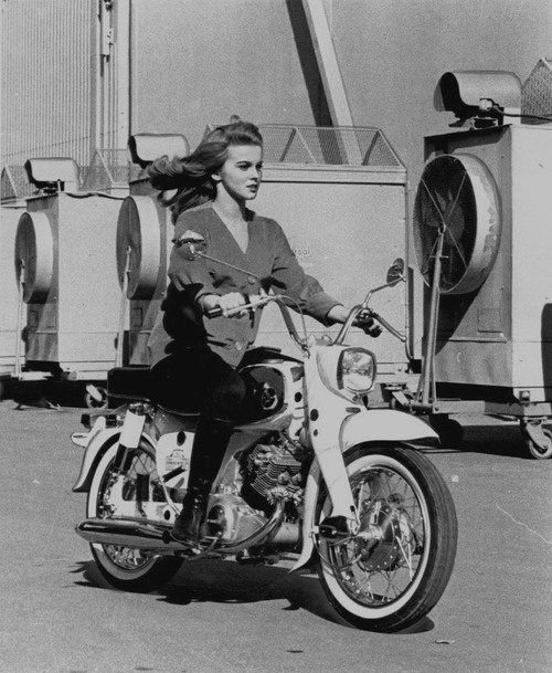 ann-margret-1964-honda-dream.jpg