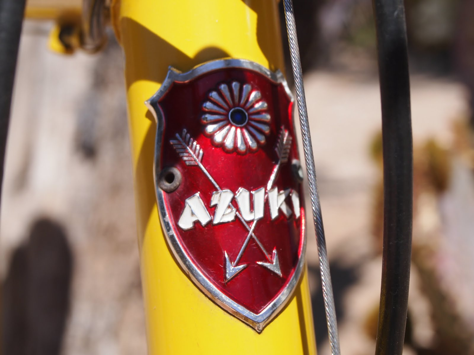 Azuki headplate b)  .jpg