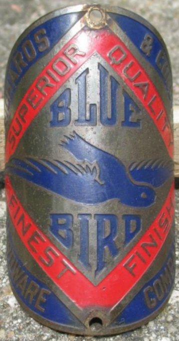 BLUE BIRD 01.jpg