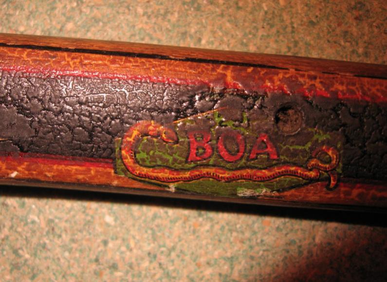 Constrictor Boa.jpg