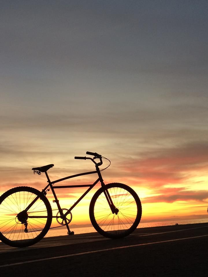 COOK SUNSET 1.jpg