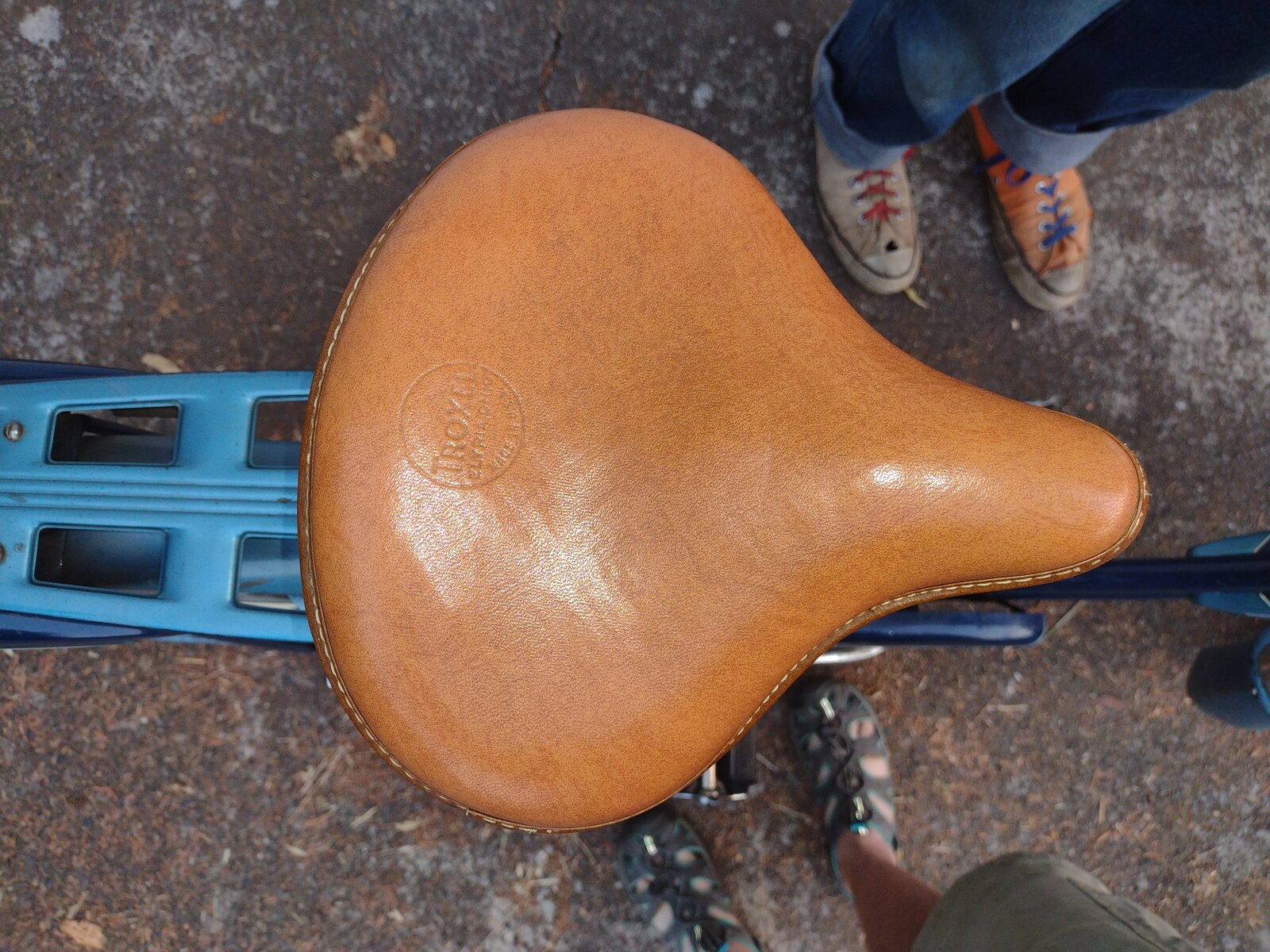 jchiggins saddle2.jpg