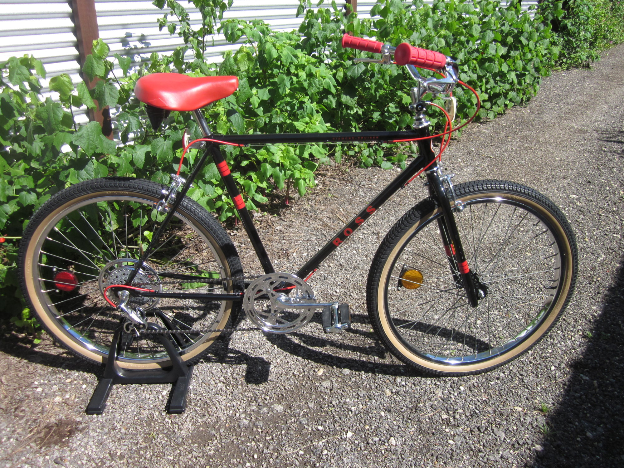 Ross Bike 002.JPG