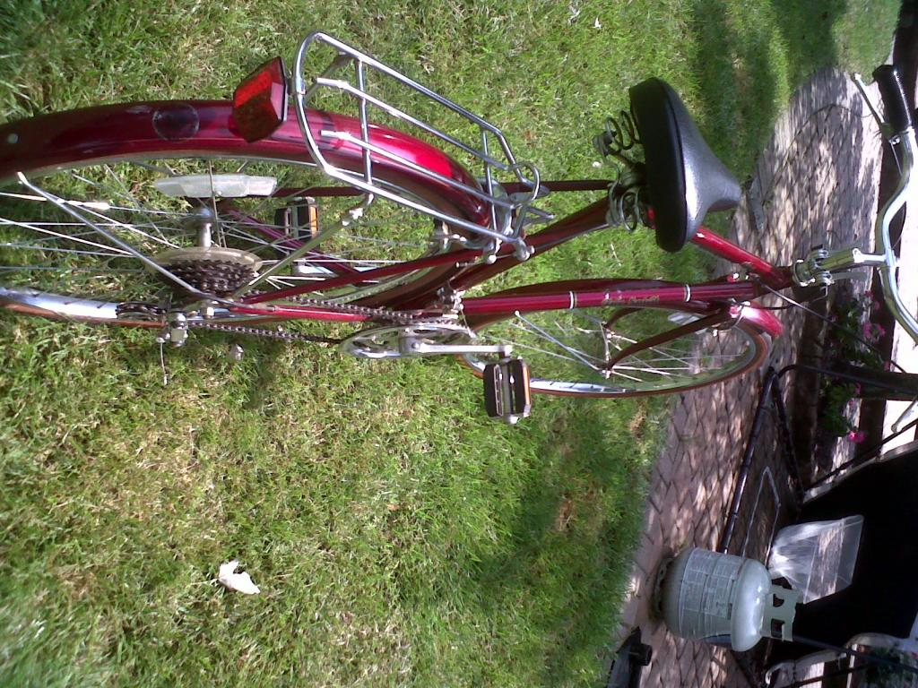 Sears Brittany Free Spirit 10 Speed   The Classic and