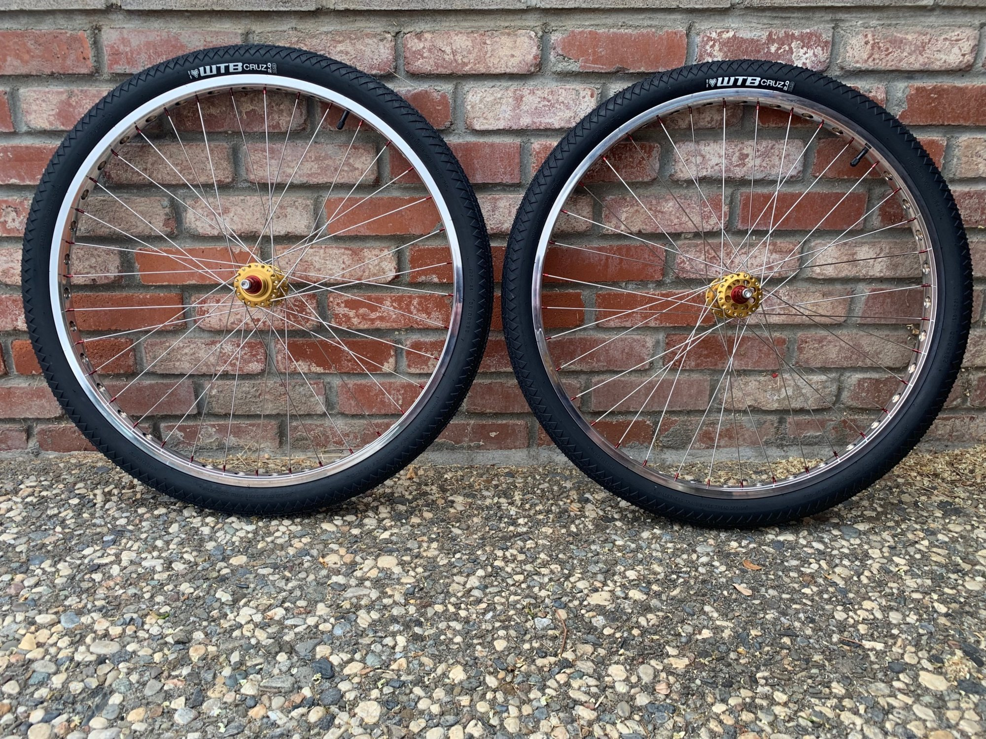Techniques Whole Shot 29 inch Rims with F6 Rocket Pod Hubs.jpeg