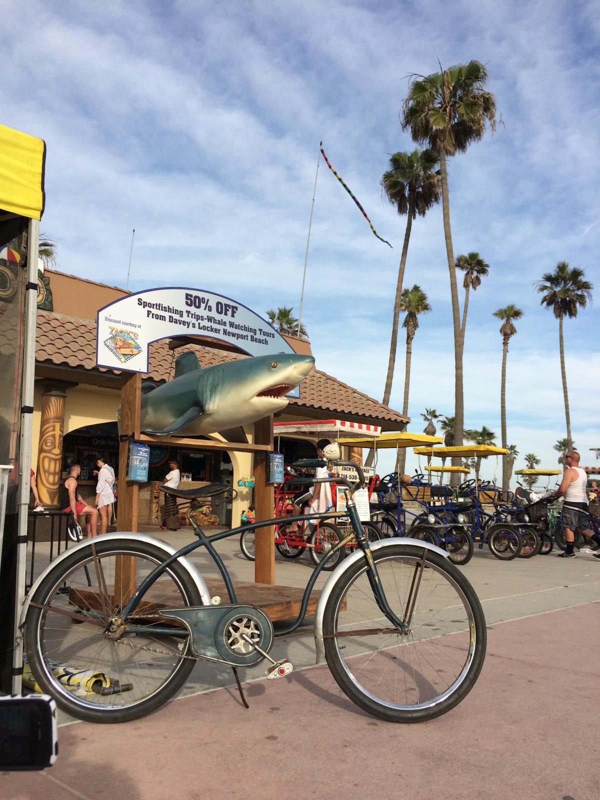 Westfield decal - Columbia Special - Shark week bicycle.jpg